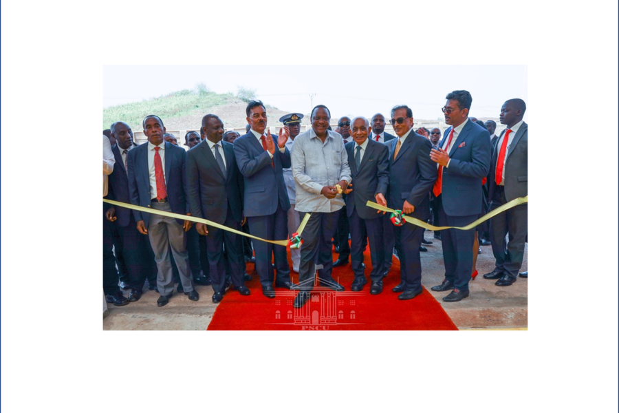 Sh20bn Bidco Industrial Park a game-changer in manufacturing